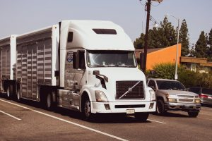 Webster, FL – Fatal Truck Collision at FL-471 and FL-50 Intersection